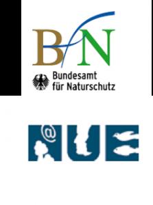 logo-bfnnue