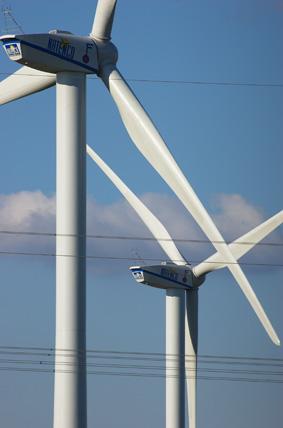 Windkraft Schreiadler