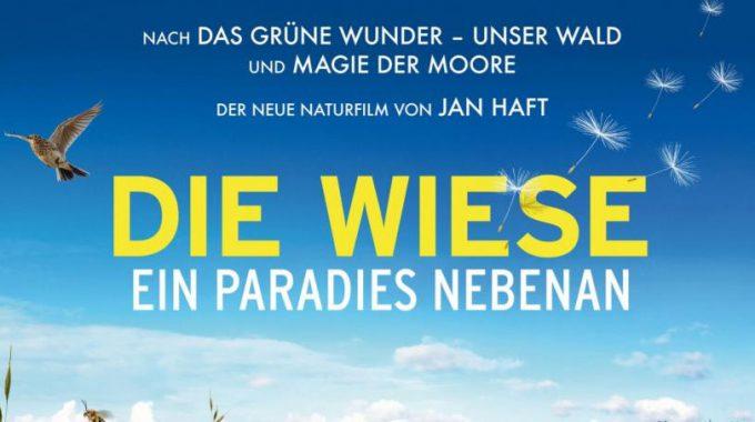 DIE WIESE – Ein Paradies Auch Für Den Schreiadler